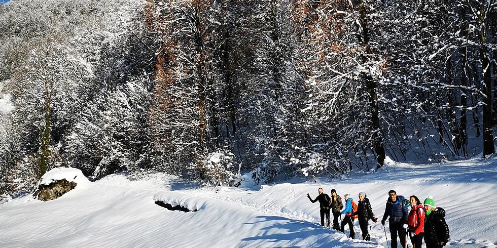 Escursione al Passo San Marco tra la neve e gli alpeggi della Val Brembana