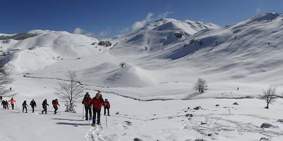 Escursione nella selvaggia Valcanale