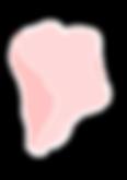 logo petals-10.png