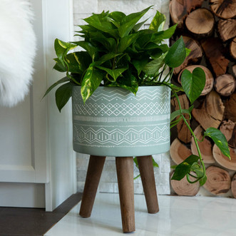 One of our Favorite Planters