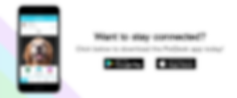 7-Website_PetDesk_Download_Transparent.p
