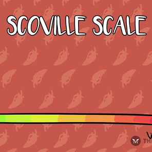 Spicy Noodles Graphics Segment