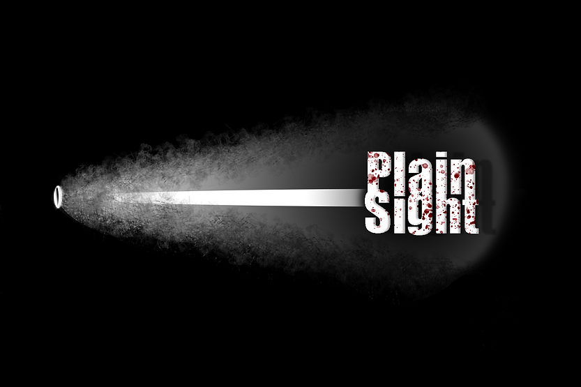 Plain Sight Final Logo 2.png
