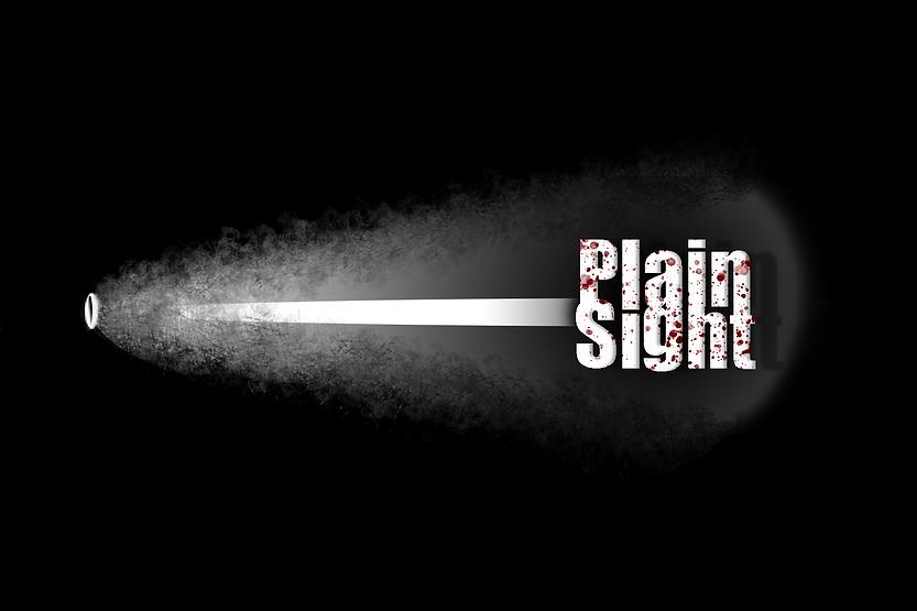 Plain Sight Final Logo 2.png