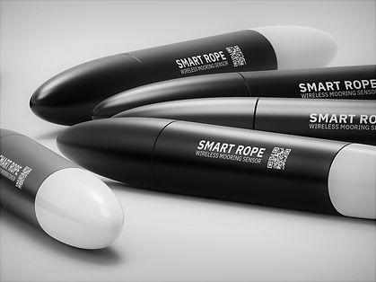 Intelligente tau - Smart Rope Sensor
