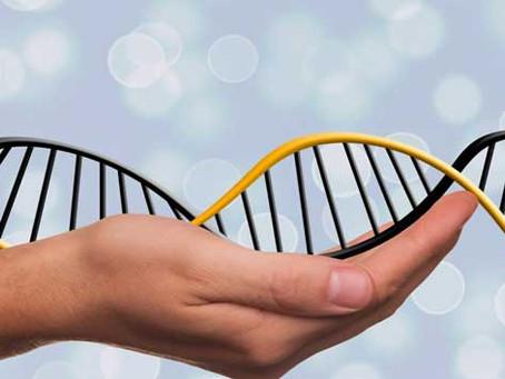 Análise busca sinais genéticos de resistência ou suscetibilidade à covid-19