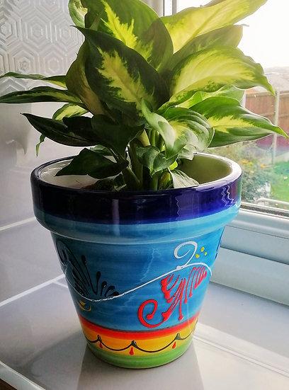 Plant Pot - Rameado Celeste