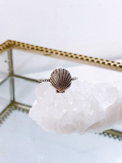 Seallop ring