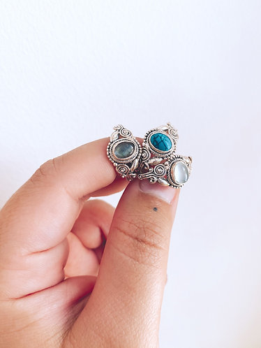 Pieridae ring