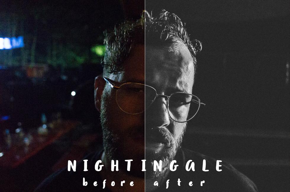 Bsp_Nightingale.jpg