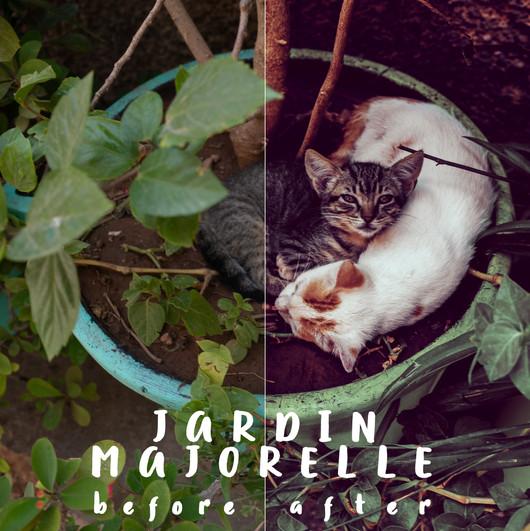 Bsp_Jardin Majorelle.jpg