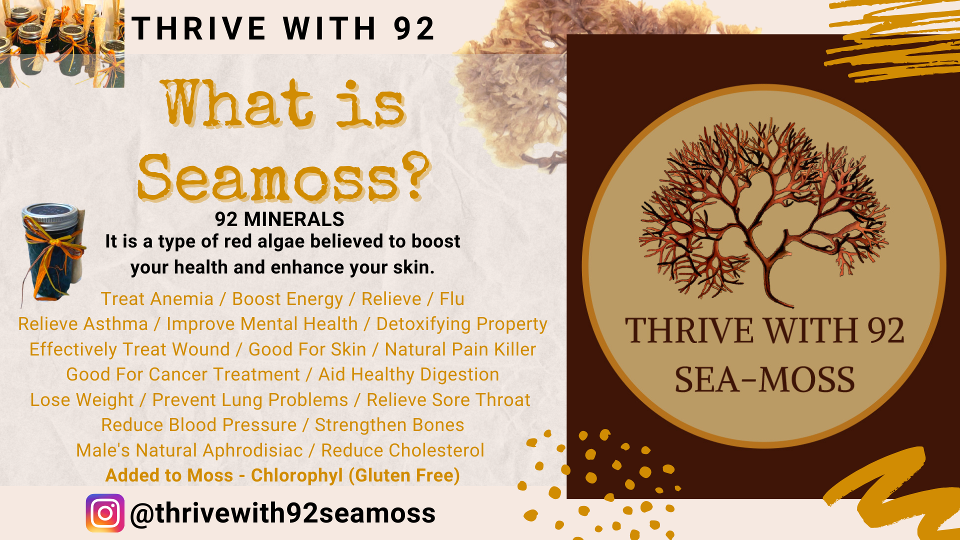 Thrive With 92 Seamoss Post Card Flyer 1
