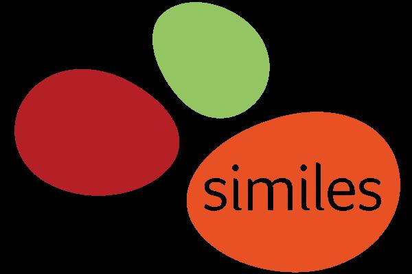 Similes Salon in vzw De Raster