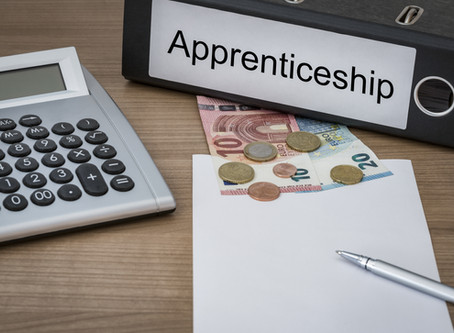 Apprentice - Could Your Business Benefit from Employing One?