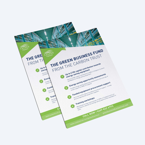 Green Business Fund flyers