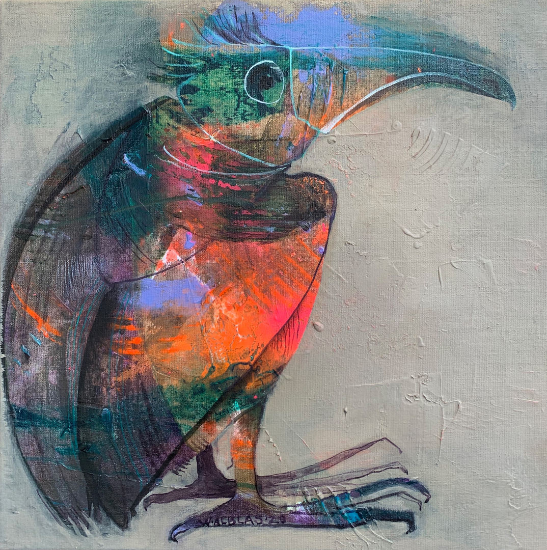 Vreemde paradijsvogel 50 x 50
