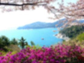 Geoje-Islands-spring.jpg