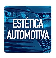 estetica automotiva.png