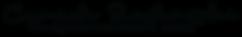 Logo_fotovideo_nowe_czarne_krzywe.png