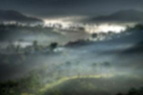 Da Lat foggy landscape