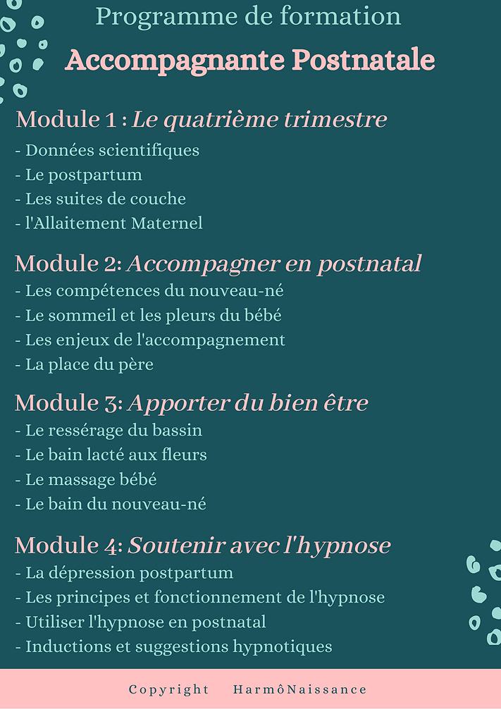 Affiche_de_beauté_capillaire_avec_des_co