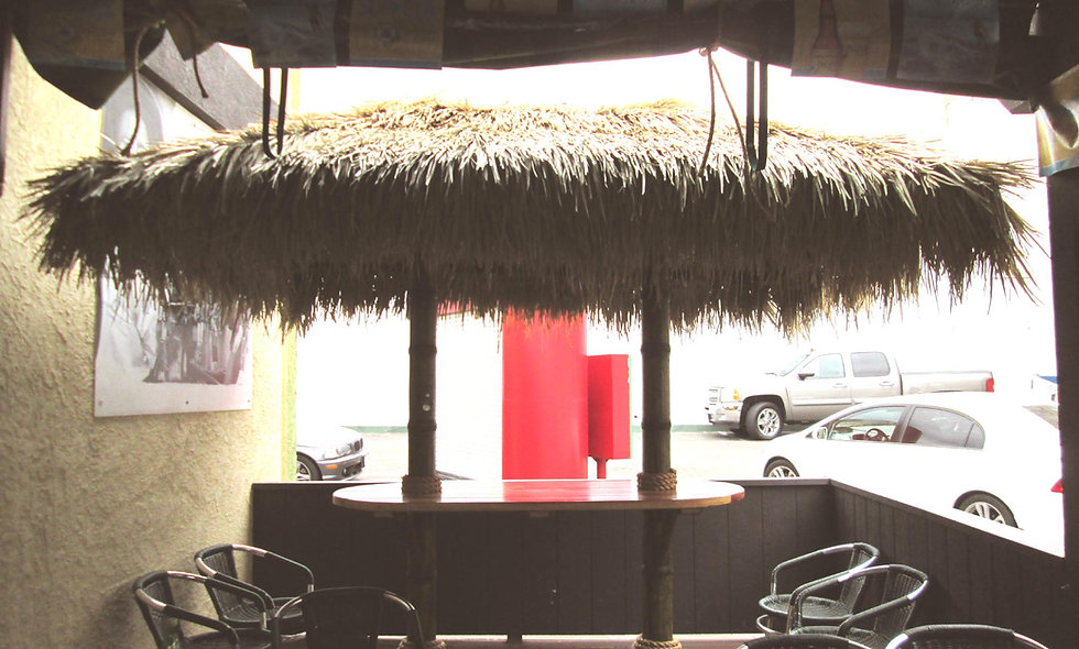 9'x18' BAJA THATCH RECTANGULAR 2 POLE HUT