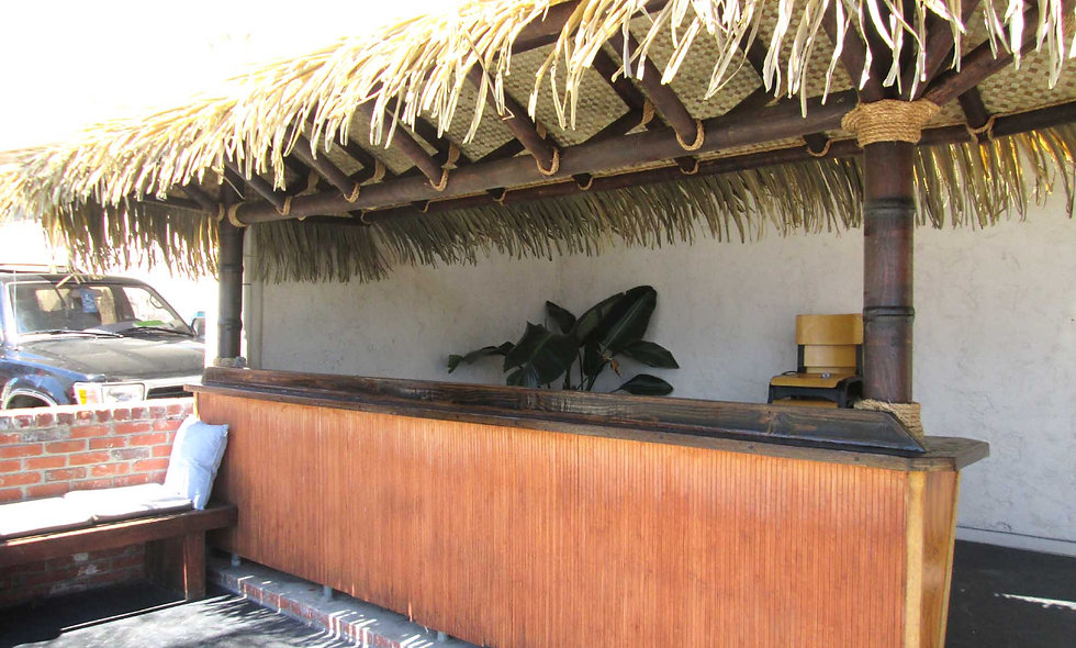 11'x22' SYNTHETIC BAJA THATCH RECTANGULAR HUT- 2 POLE