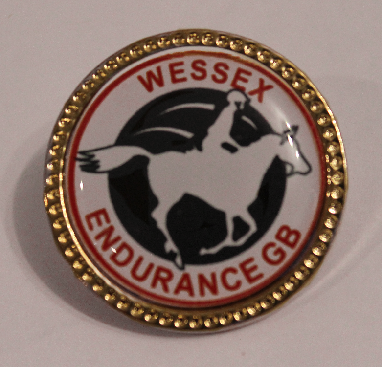 Wessex Endurance GB Pin