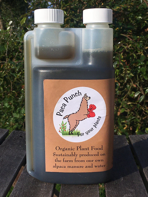 Paca Punch Natural Plant Feed 500ML