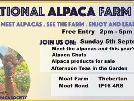 Paca Punch Moat Alpacas Weekend 13th August