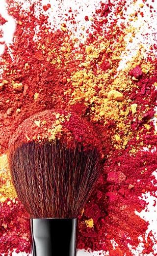 Makeup artist Brush, Blush, Bright Color, Vibrant