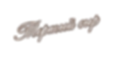 Логотип на прозрачном.png