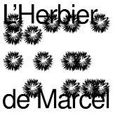 HDM-post-logo2a.jpg