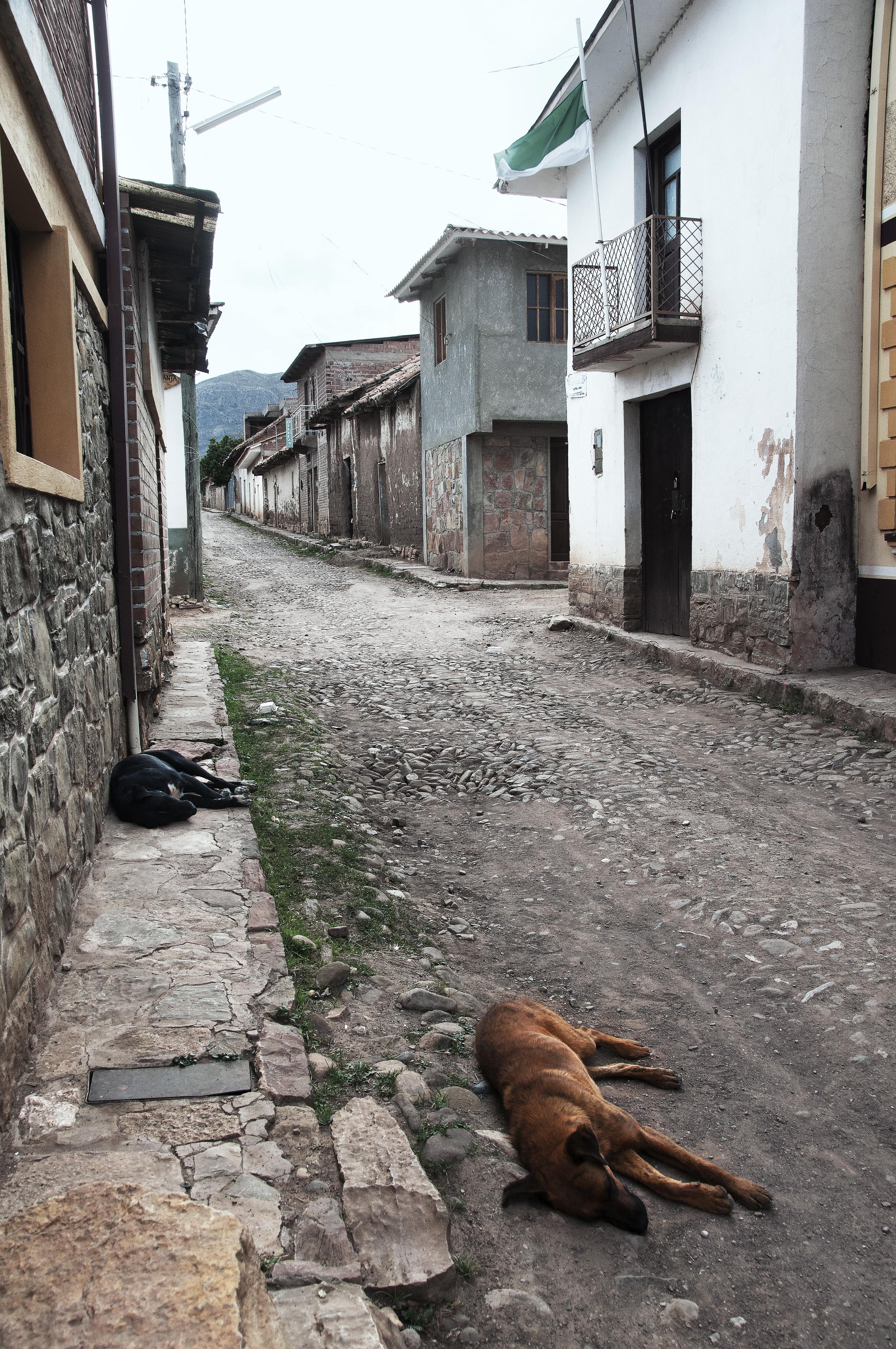 Street View, Toro Toro