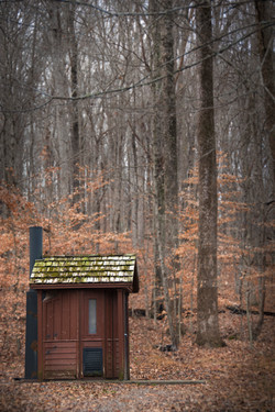 Cabin in the Woods, Missouri