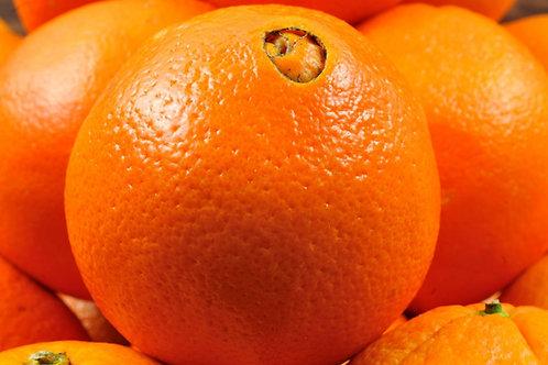 Arancia Navel da tavola