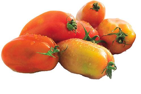 Pomodoro cenkara (perino)