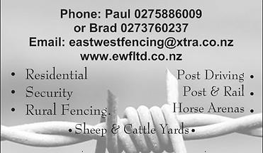 card back.PNG