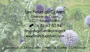 Carte de visite Les Fleurs du Golven