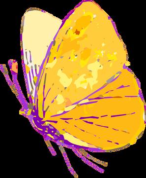 Papillon 1.png