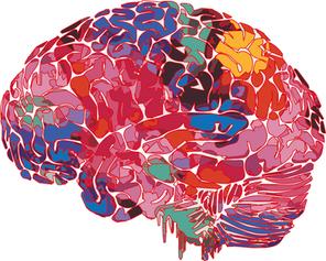 Illustration Cerveau
