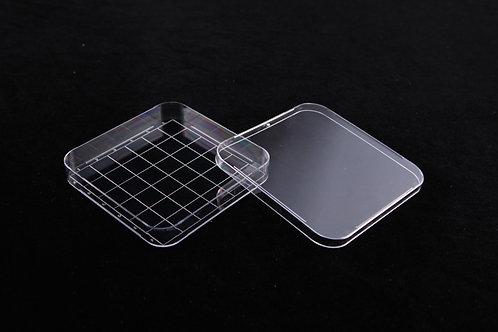 方形培養皿