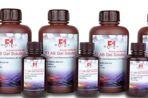 F1 AB gel 快速製膠溶液8&10&12%15%