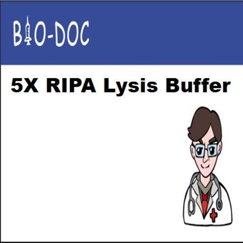 5X RIPA Lysis Buffer