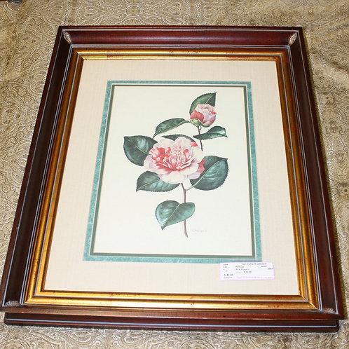 Framed Pink Rose Print