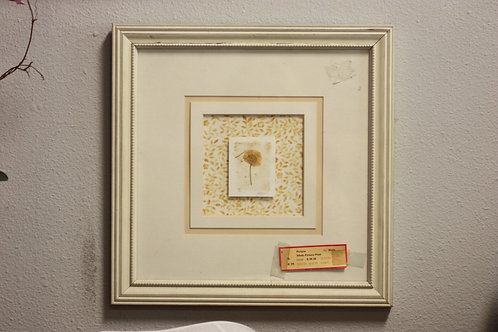 Framed Dried Flower Picture