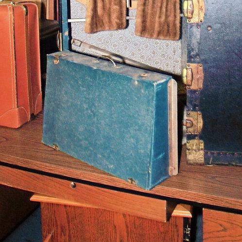 Steamer Trunk Storage Case