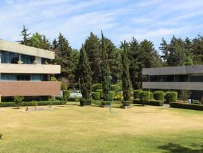 Las mejores universidades para estudiar turismo en CDMX