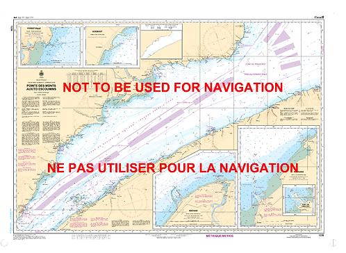 RNC1236 - Pointe des Monts aux/to Escoumins