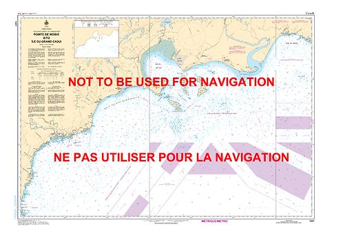 RNC1221 - Pointe de Moisie à/to Île du Grand Caoui